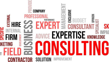Real Estate Technology Consulting
